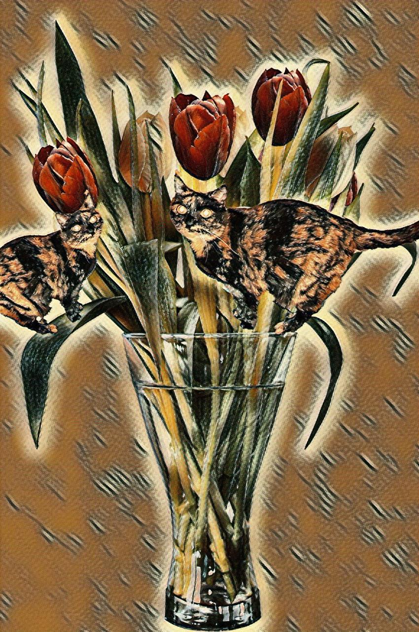 cat in flower vase photo with Picasso effect