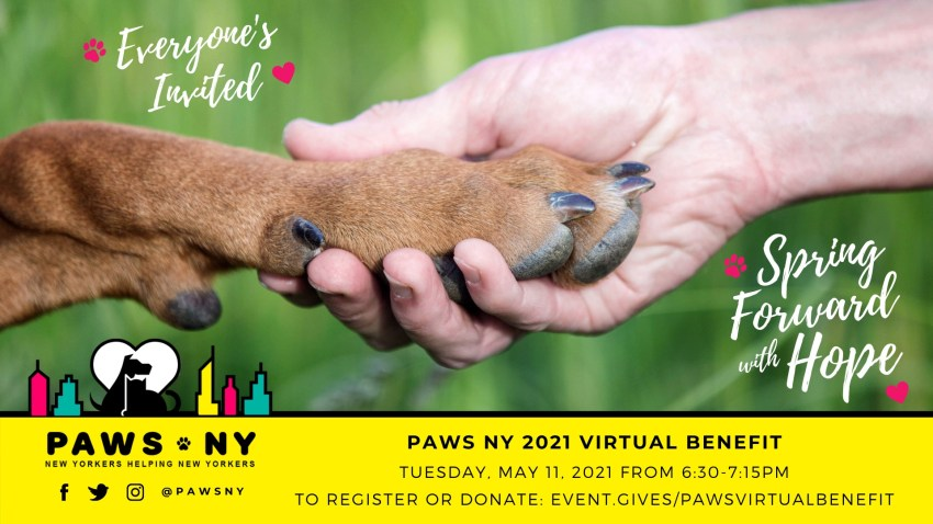 PAWS NY event invitation