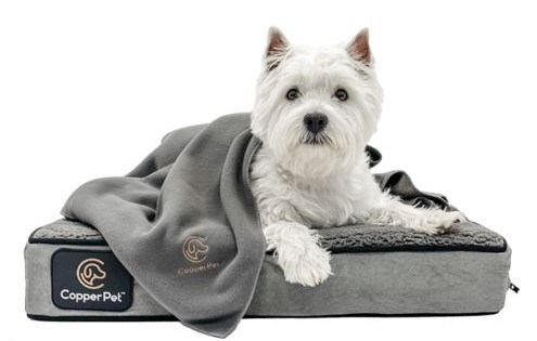 CopperPet blanket and bed
