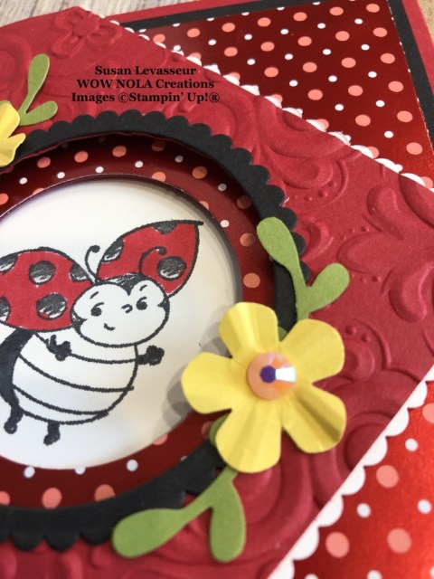 Little Ladybug Peek-a-Boo Fancy Fold, Susan Levasseur, WOW NOLA Creations, Stampin' Up!