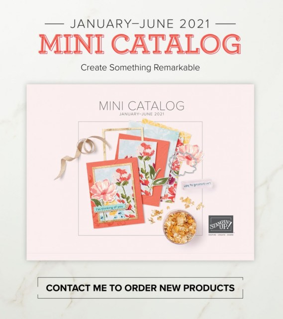 Jan-June Mini Catalog, Susan Levasseur, WOW NOLA Creations, Stampin' Up!