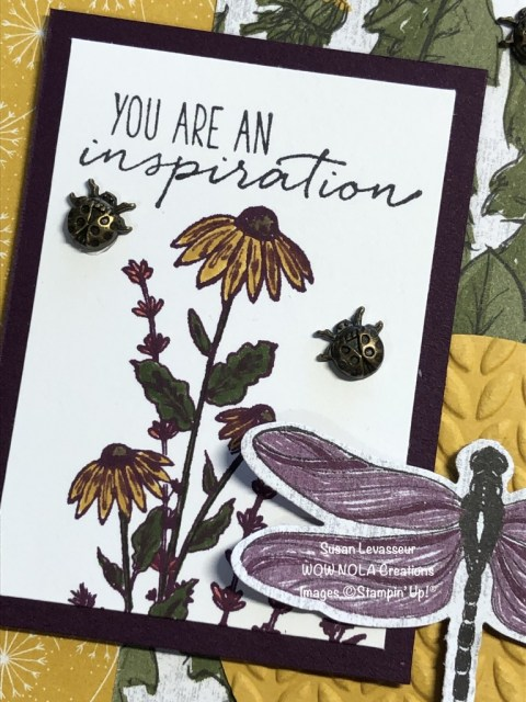 Dragonfly Garden Sneek Peek, Susan Levasseur, WOW NOLA Creations, Stampin' Up!