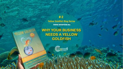 Why Your Business Needs A Yellow Goldfish | Yellow Goldfish blog Series