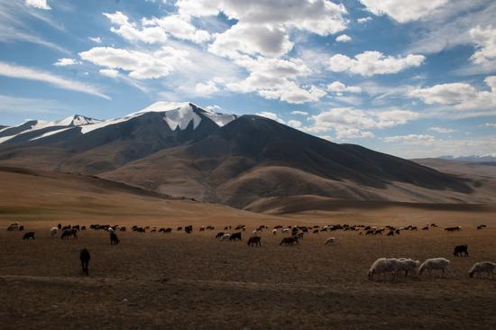 La quiete e la bellezza di un paesaggio della Mongolia.