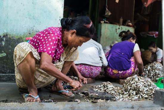A Katha la lavorazione del pesce dell'Irrawaddy occupa quasi tutte le donne della città.