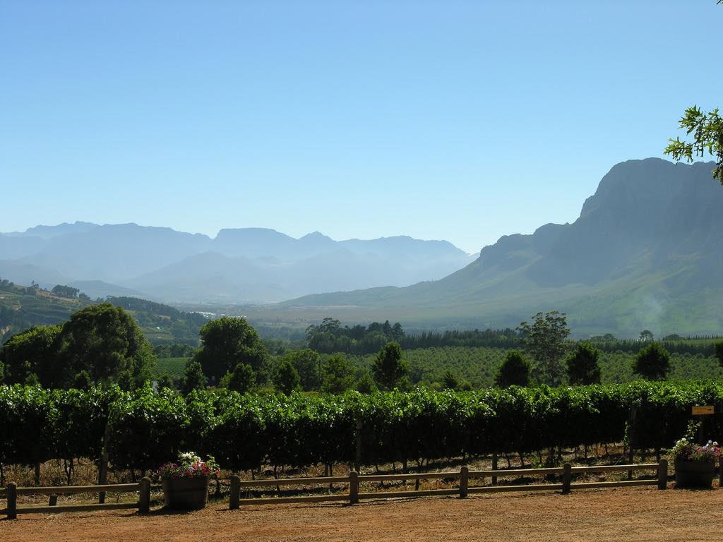Cape Winelands, Cape Town - by Chris Eason:Flickr