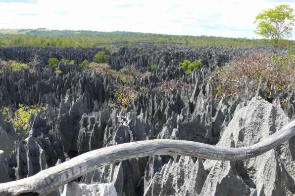 Tsingy de Bemaraha, Madagascar - by Rita Willaert:Flickr