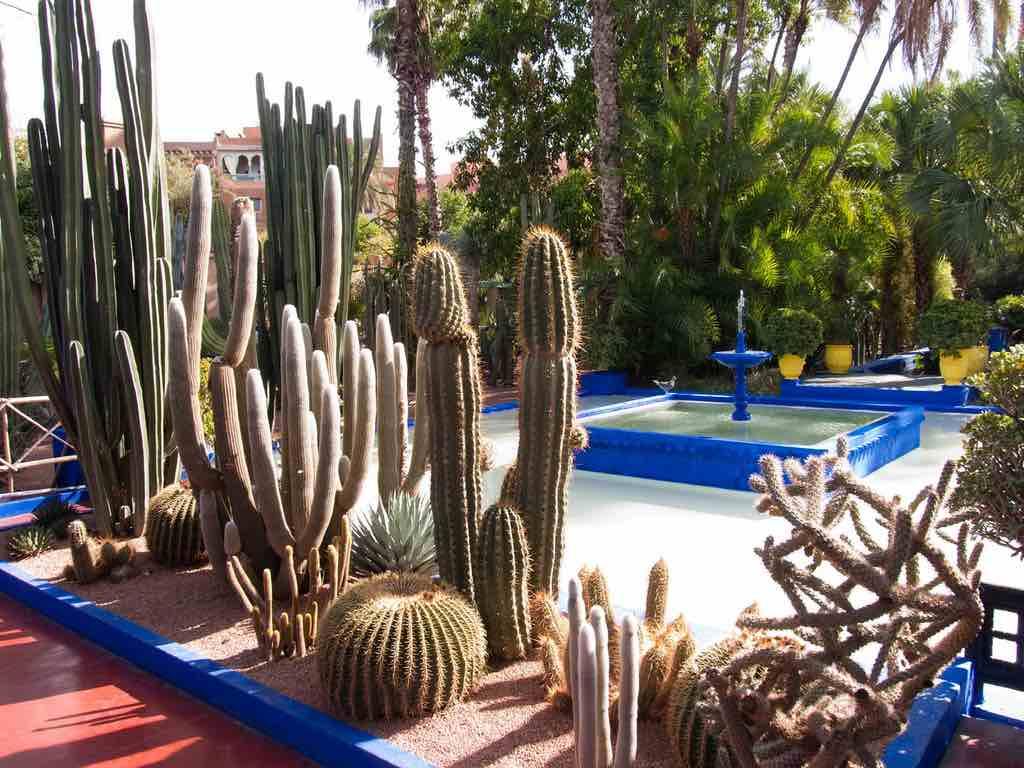 Jardin Majorelle, Marrakech - by Jordi Marsol - king nikochan:Flickr