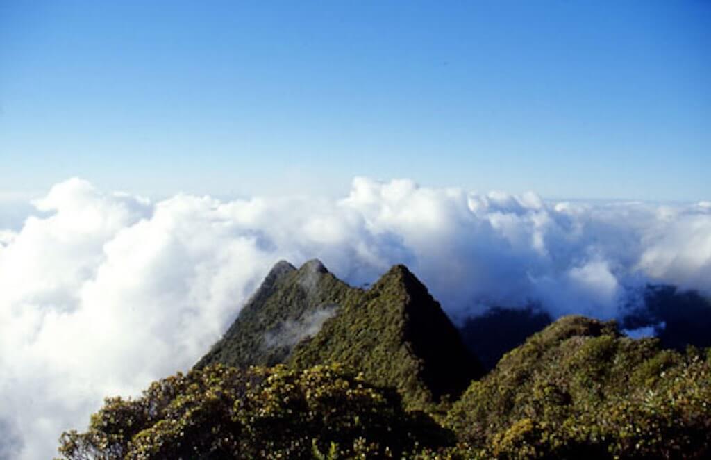 Mount Aorai, Tahiti - by Friedjoff Trautwein:Wikimedia
