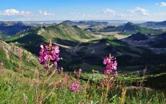 Gorkhi Terelji National Park - by Lennart M/Wikimedia.org