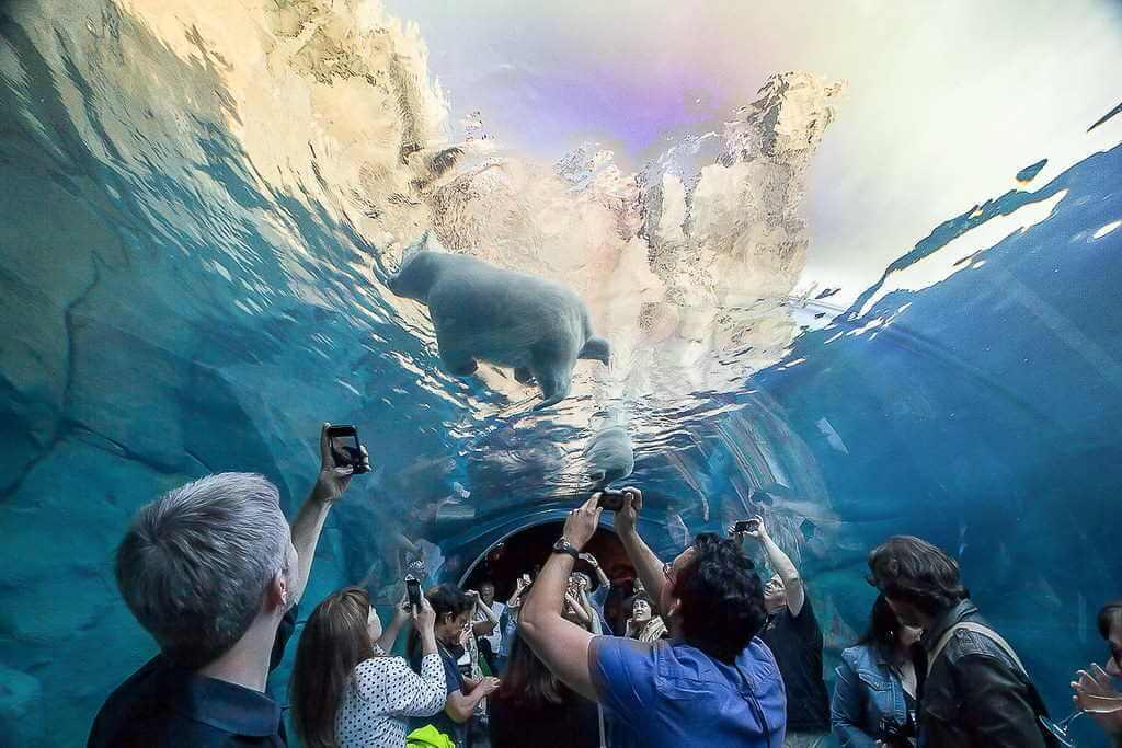 Assiniboine Park and Zoo -by Erik Araujo/Flickr.com