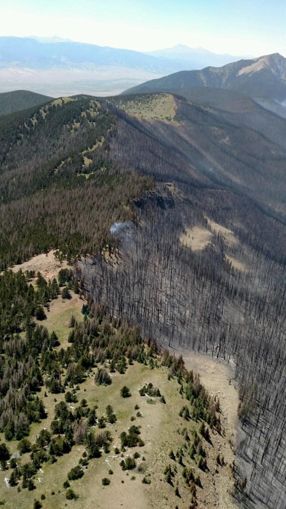 Ridge rim where the fire stopped in the Sangre de Cristo Wilderness