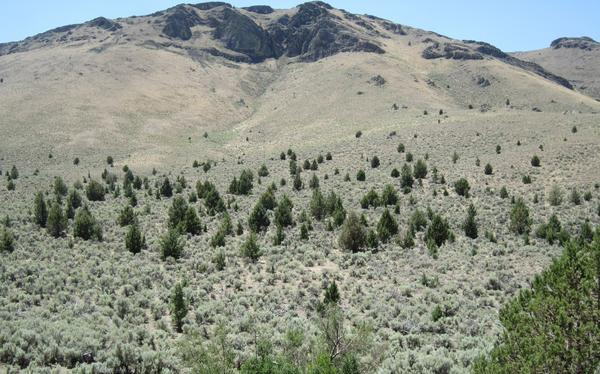 The BLM manages more than 250 million acres across the American West.