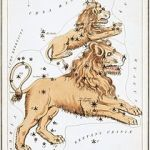 Leo, with Leo Minor above, as depicted in Urania's Mirror, a set of constellation cards published in London c.1825.