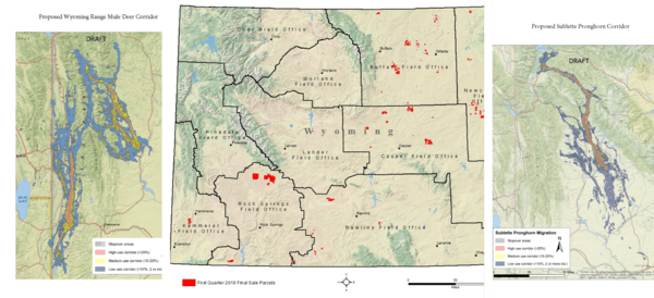 A map of the 2019 BLM lease sale, the proposed migration corridor for the Sublette Pronghorn herd, and the proposed migration corridor for the Wyoming Range mule deer herd.
