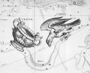 The en:Corvus and en:Crater constellations drawn by Johannes Hevelius in Uranographia, his celestial catalogue in 1690. Scanned by: Torsten Bronger 2003 April 4