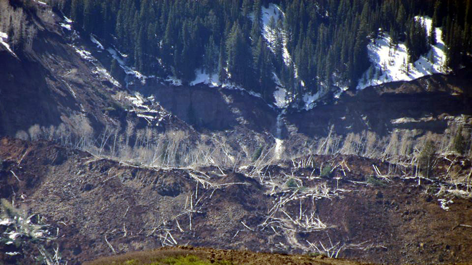 <p>A closer view of the area shows toppled trees and other debris displaced by the Sunday's slide in Mesa County.</p>