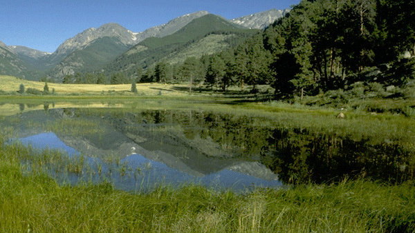 <p>A view of Sheep Lakes in Rocky Mountain National Park.</p>