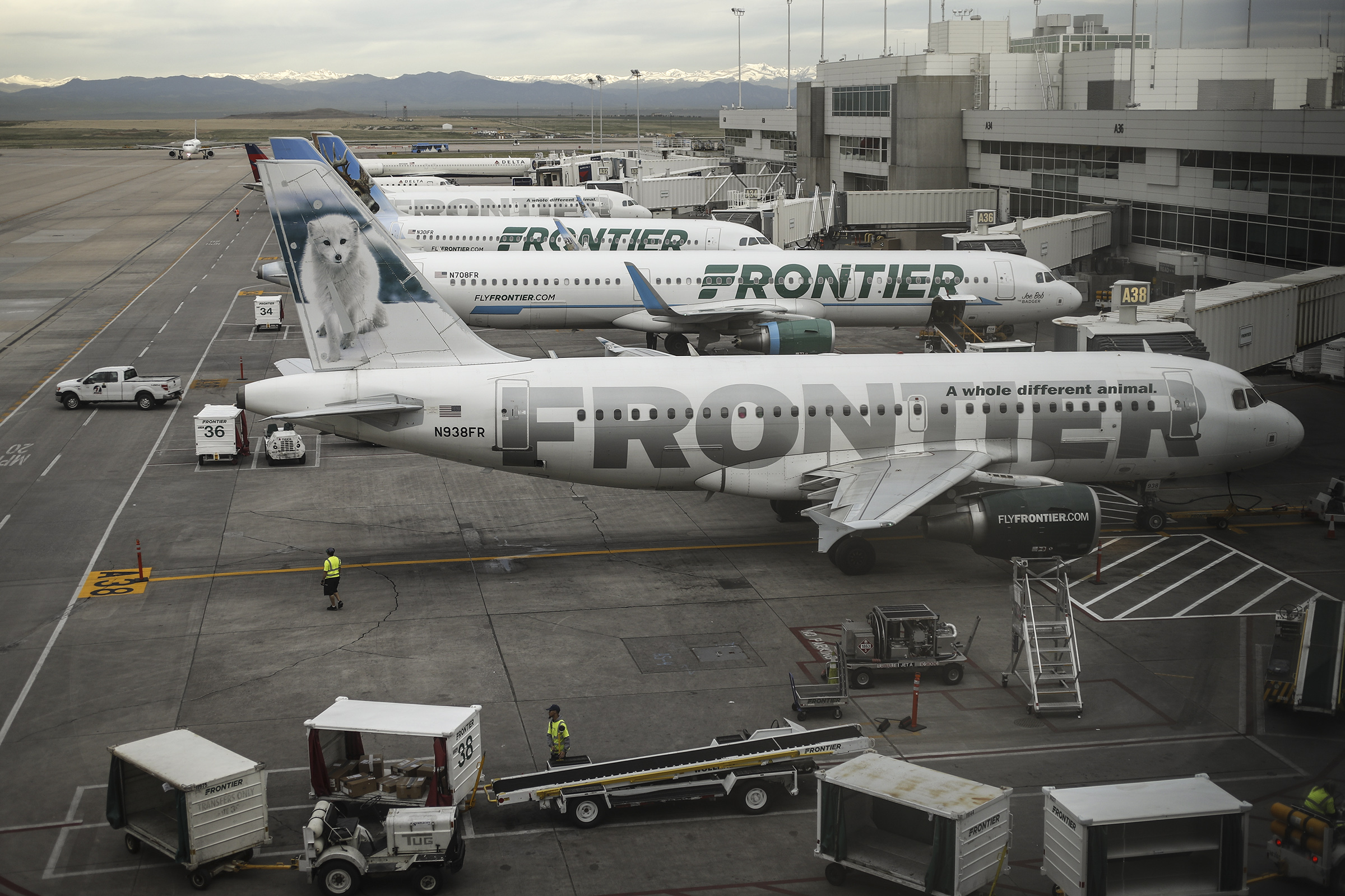 <p>Frontier Airlines jetliners sit at gates on the A concourse at Denver International Airport in May 2017.</p>