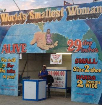 """<p>The """"Little Liz"""" display before it was taken down at the Boulder County Fair earlier this month.</p>"""