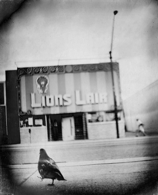 """<p>Denver photographer Gary Isaacs's""""36 Views of the Lions Lair"""" offers 36 unique perspectives on this Colfax Avenue watering hole.</p>"""