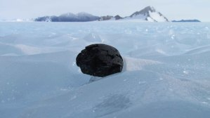 meteorite-on-blue-ice-at-szabo-bluff1
