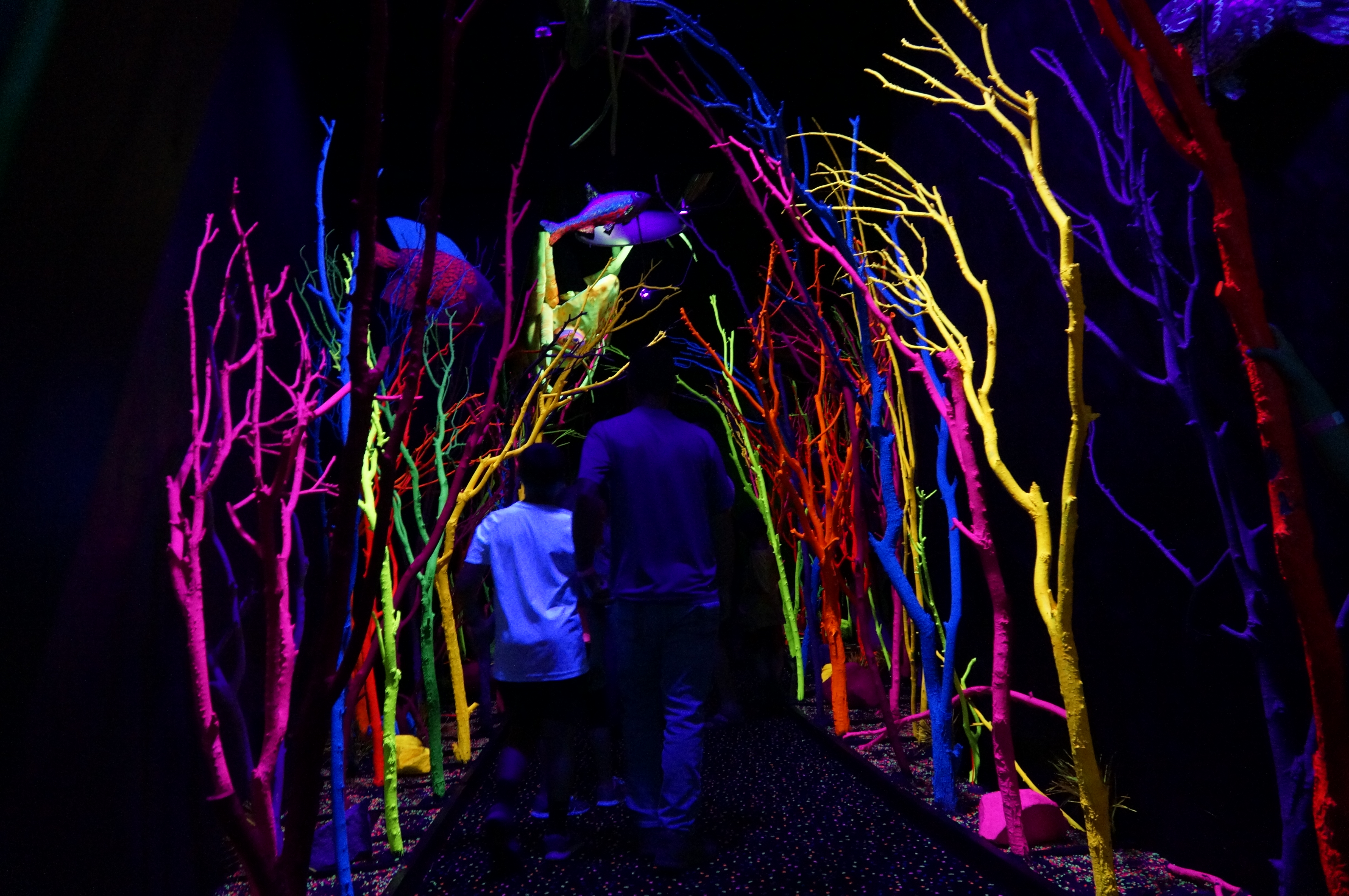 Visitors walk through an iconic section of Meow Wolf's Santa Fe installation on July 2, 2018.