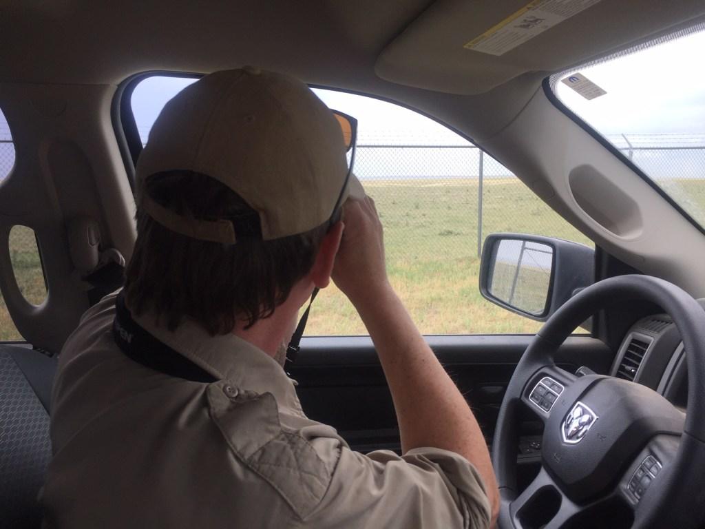 Clark Jones looks for birds.