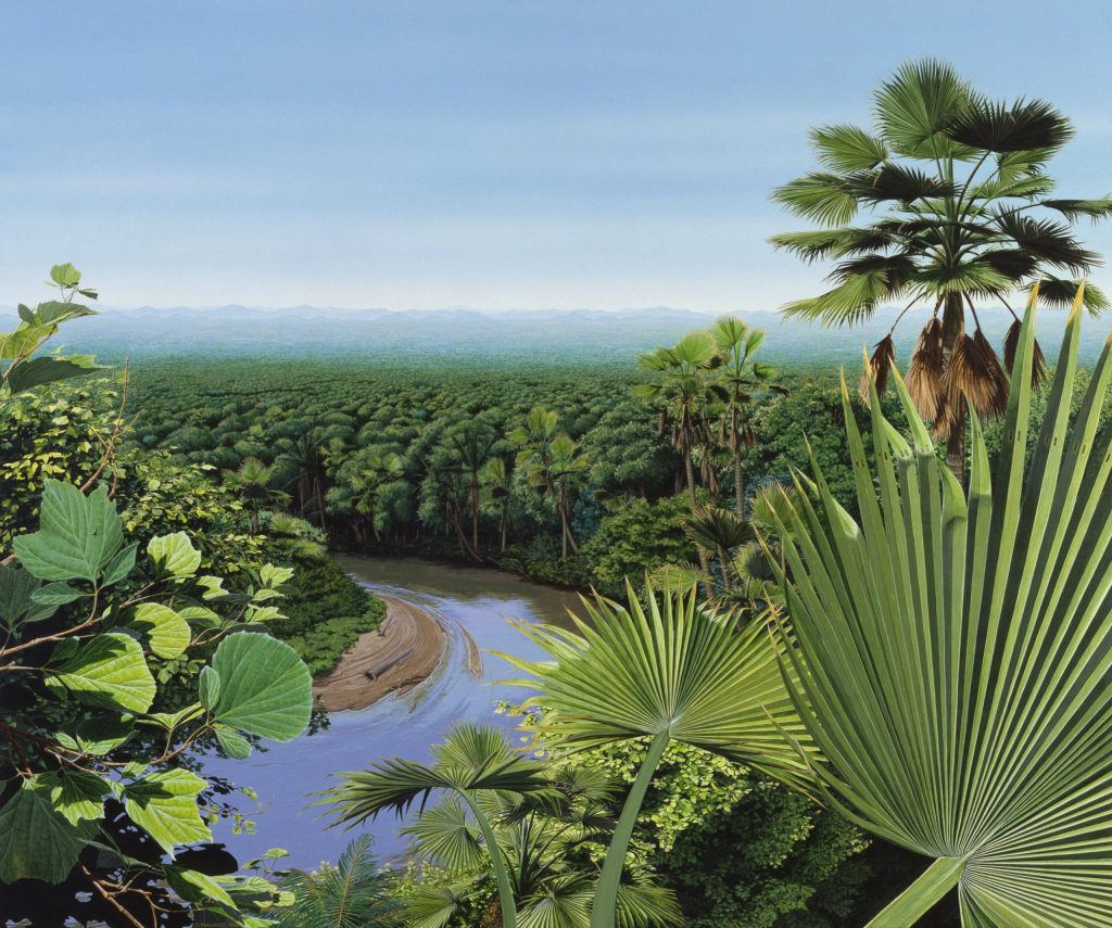 Artist rendering of the palm world