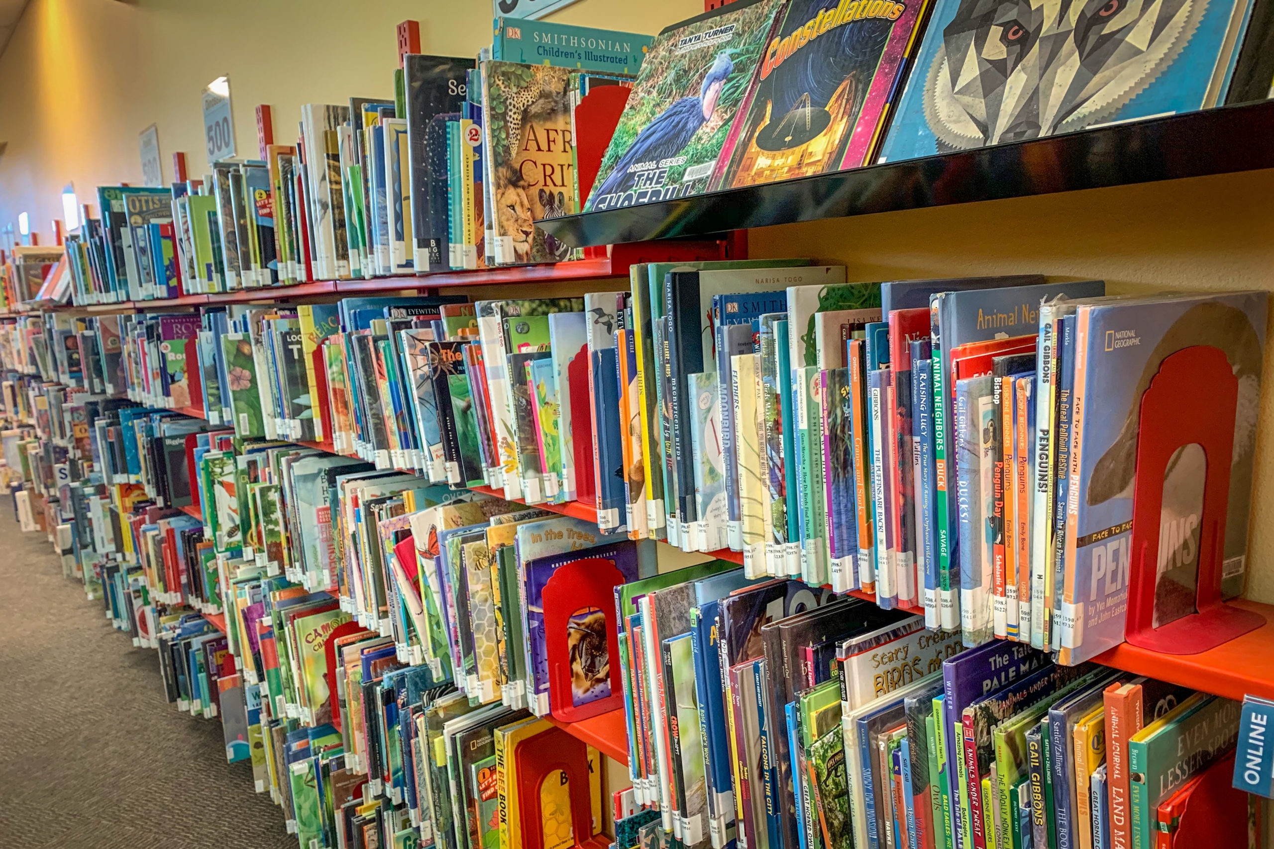 Mesa County Libraries will do away with overdue fines starting Jan. 1, 2020. Immediately, 3,000 people who were blocked from checking out books, movies and music will have their privileges restored.