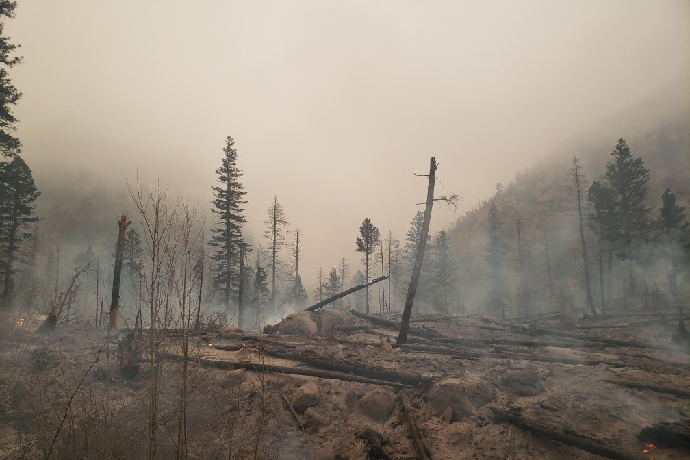 Damage from the East Troublesome fire burns in Rocky Mountain National Park by Kawuneechee Valley near Coyote Valley trailhead.