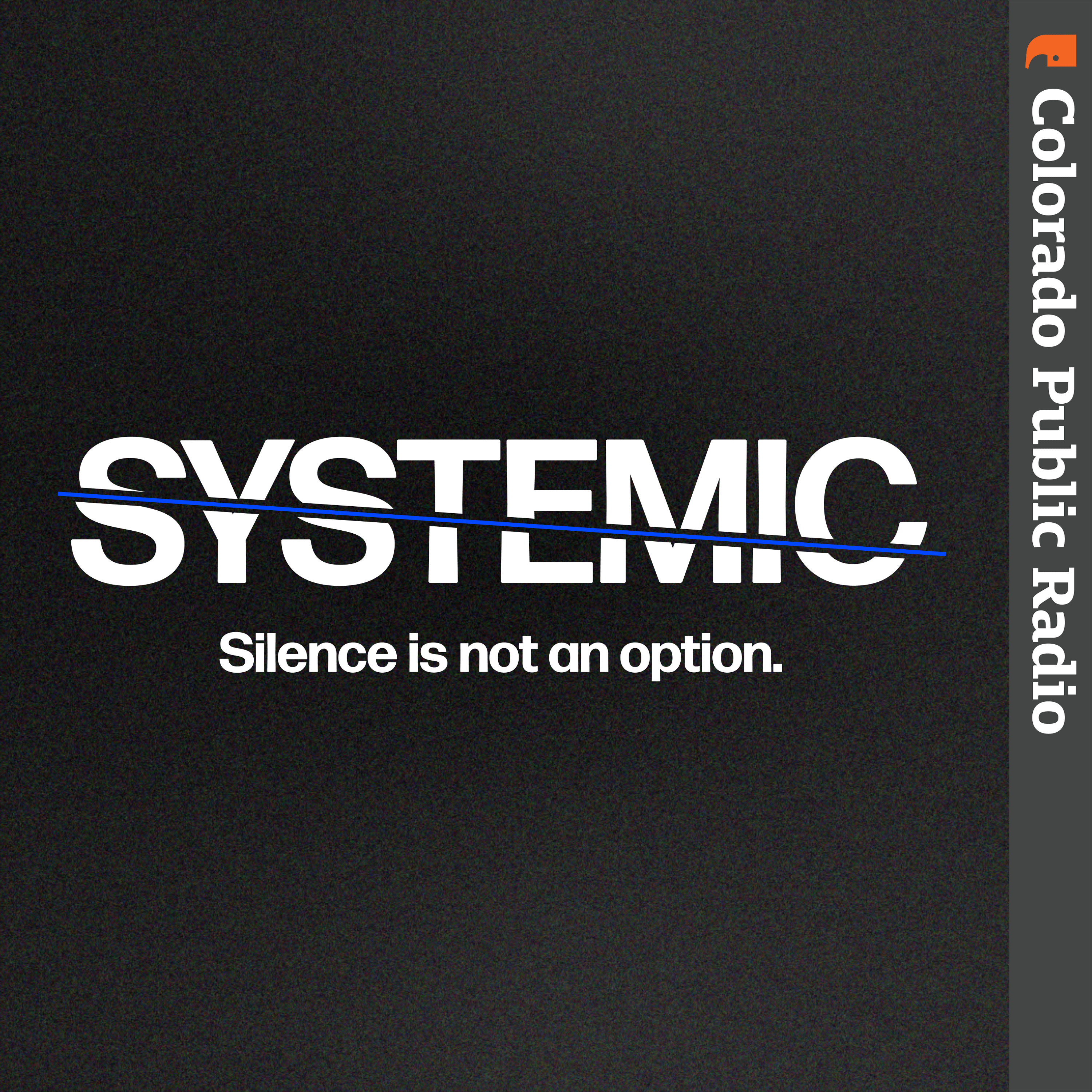 Logo for Systemic - Silence Is Not An Option