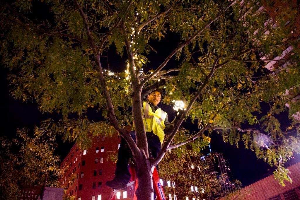 Aldo Martinez strings lights in a tree over the 16th Street Mall. (Kevin J. Beaty/Denverite)  christmas lights; xmas; 16th street mall; sixteenth street; kevinjbeaty; denver; colorado; denverite