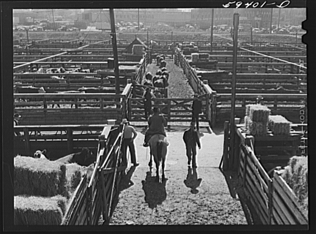 The Denver Stockyards in 1941. (Marion Post Wolcott/Library of Congress)