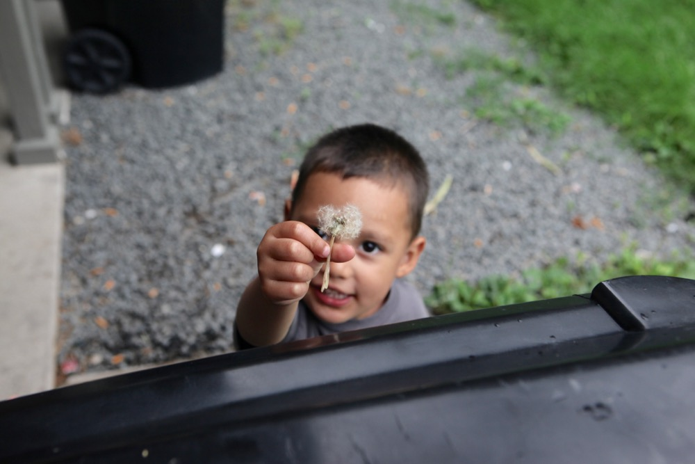 Exavier Partida with a dandelion outside his grandmother's apartment in the East Colfax/East Montclair neighborhood. (Andrew Kenney/Denverite)