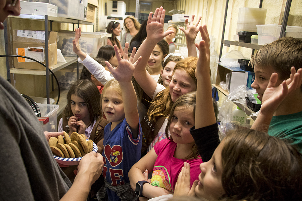 Troop 67478 Brownies are eager to try cookies made with cricket powder. Rocky Mountain Micro Ranch, Nov. 3, 2017. (Kevin J. Beaty/Denverite)  denver; colorado; insects; agriculture; bug farm; food; sustainability; morrison road; westwood; denverite; kevinjbeaty;