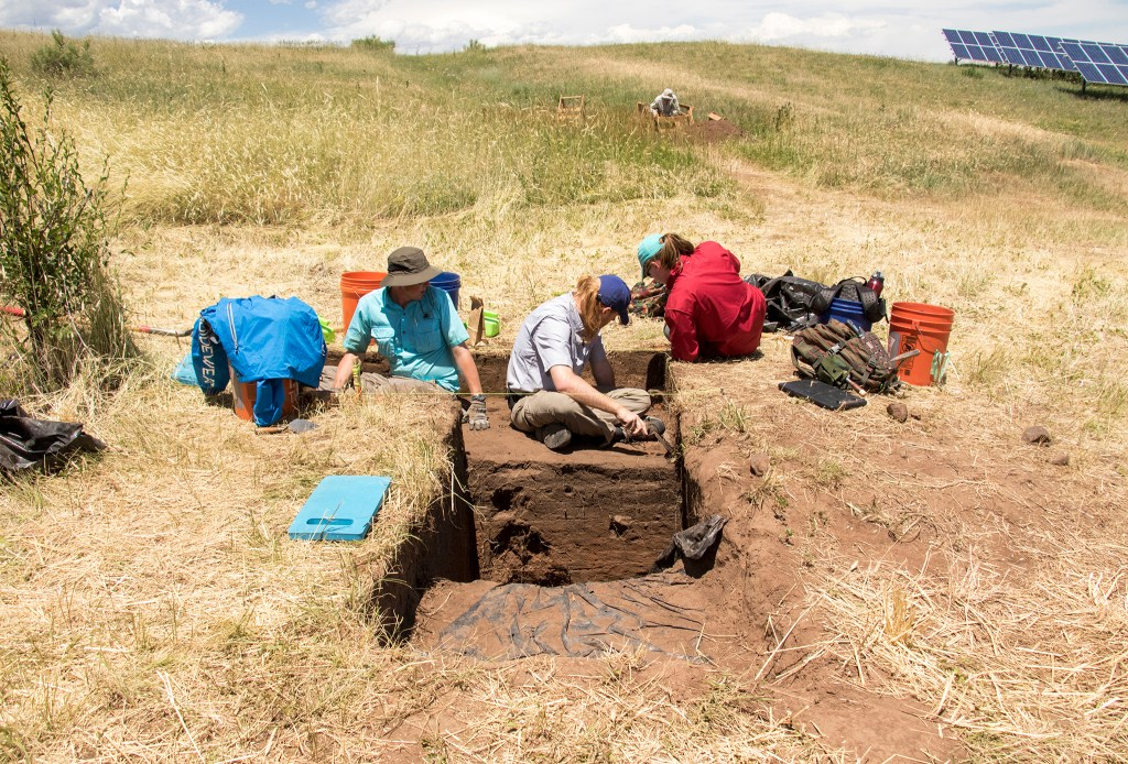 Denver Museum of Nature and Science volunteers work at Magic Mountain, an archaeological dig site in Golden, June 22, 2018. (Kevin J. Beaty/Denverite)