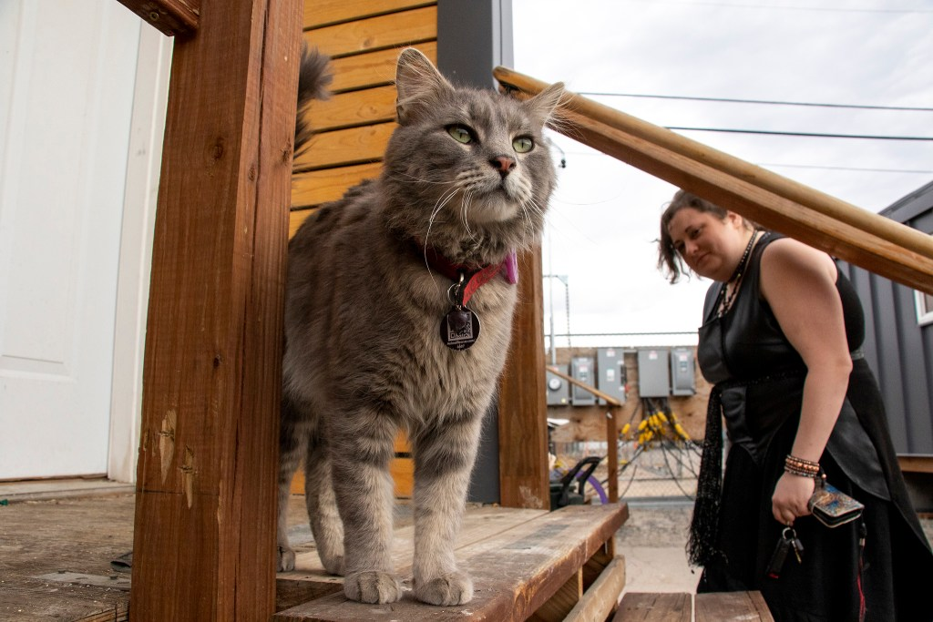 Luna Raine and her cat, Alexios, at her place in the Beloved Community tiny home village, March 21, 2019. (Kevin J. Beaty/Denverite)