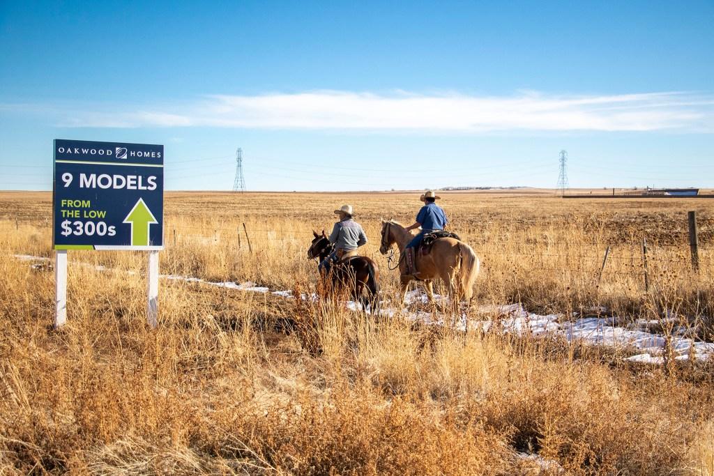Rodrido Rodriguez and Juan Fernandez ride their mounts through a field in Aurora that's across the street from a recent housing development. Dec. 20, 2019. (Kevin J. Beaty/Denverite)