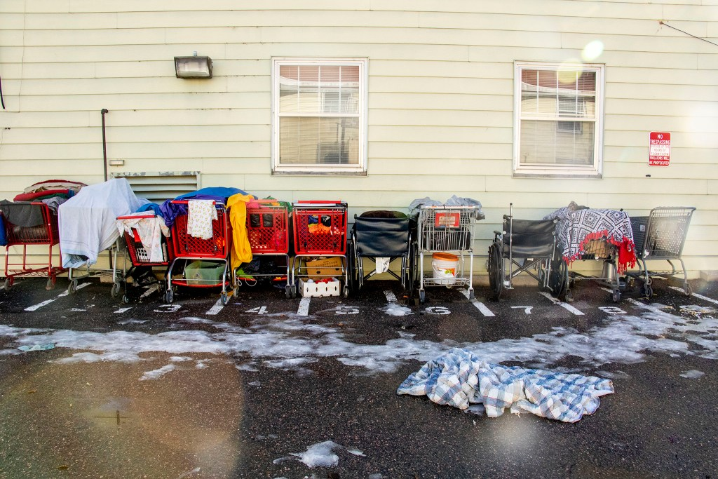 Shopping cart parking begind the Aurora Day Resouce Center, Nov. 11, 2019. (Kevin J. Beaty/Denverite)