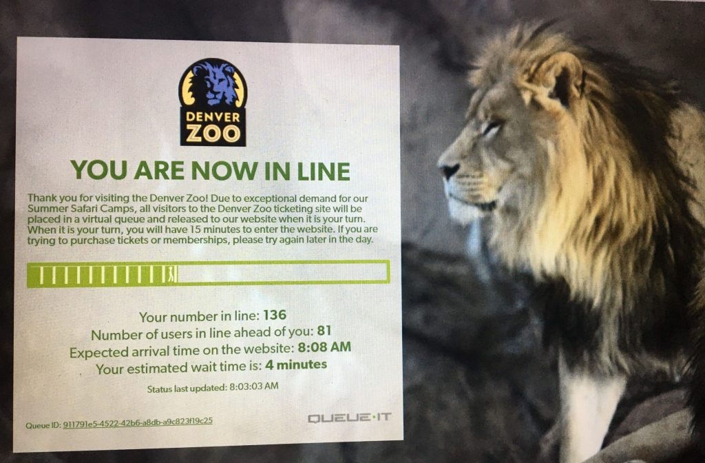 A screenshot of the online waiting room for registration at the Denver Zoo camps.