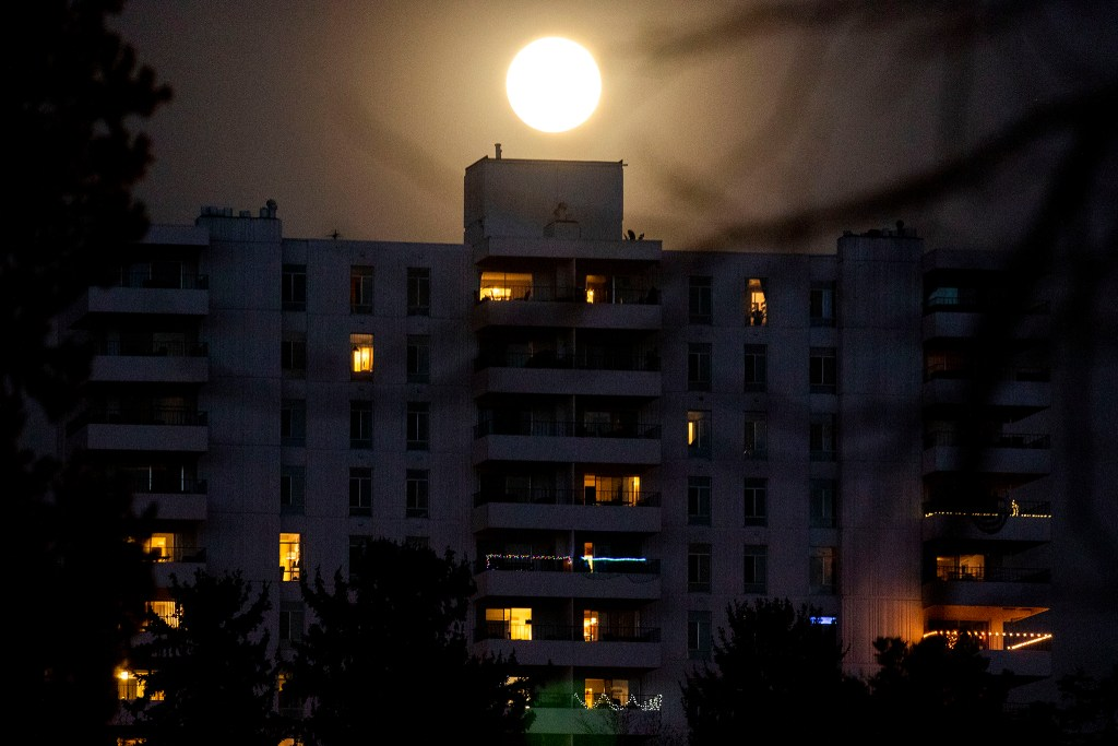 A huge moon hangs above Cheesman Park. April 7, 2020. (Kevin J. Beaty/Denverite)