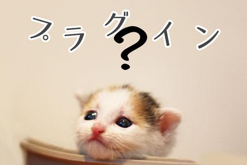 プラグインが分からない猫