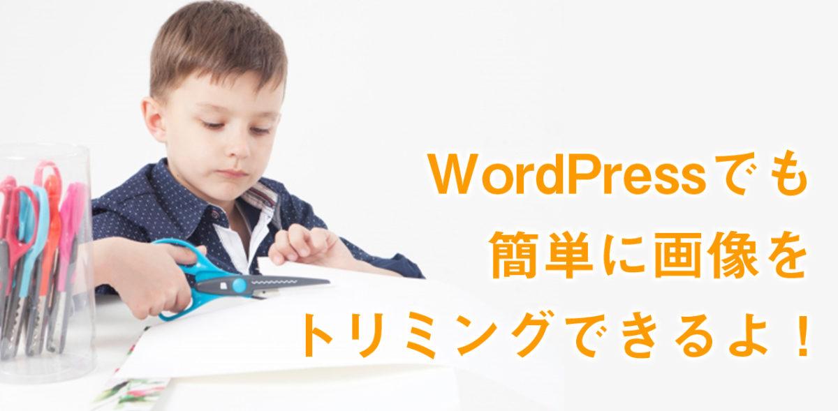WordPressで画像を切り取る方法
