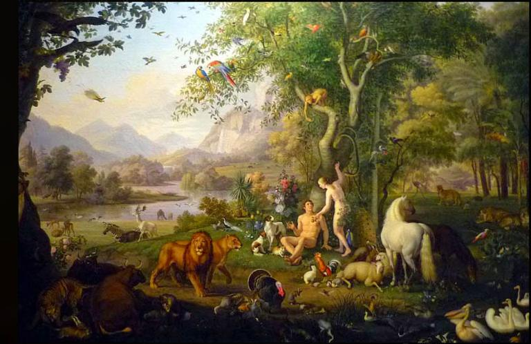 How Modern Science Proves A Critical Aspect Of The Genesis