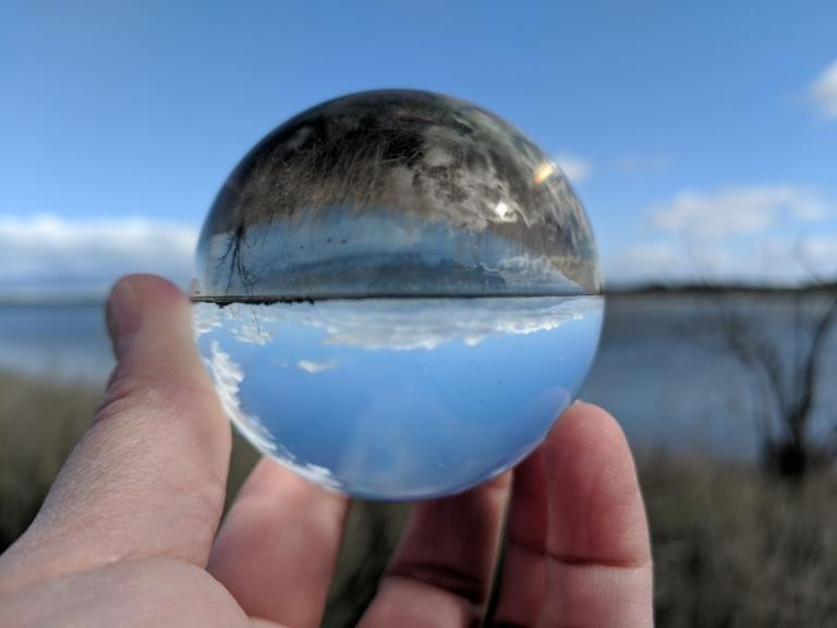 Wetlands seen though a glass ball, reversing the image