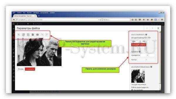 Как вставить картинку в WordPress