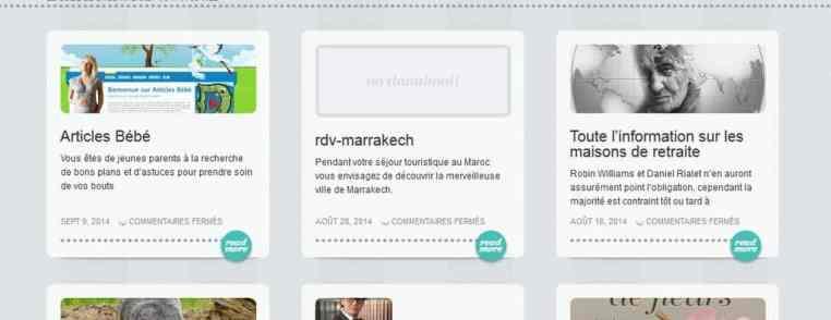 Annuaire 08web utilise le thème WordPress JournalCrunch traduit en français par WP-Traduction.com