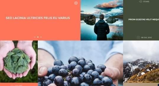 Fichiers .po et .mo de la traduction française du thème premium WOrdPress Shape de chez Tesla Themes