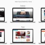 Fichiers .po et .mo de la traduction française du thème SocialNow de MTS